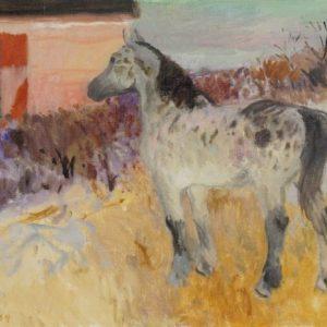 Cameron Booth Horse