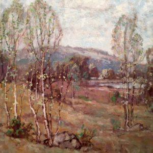 Knute Heldner Spring Birches