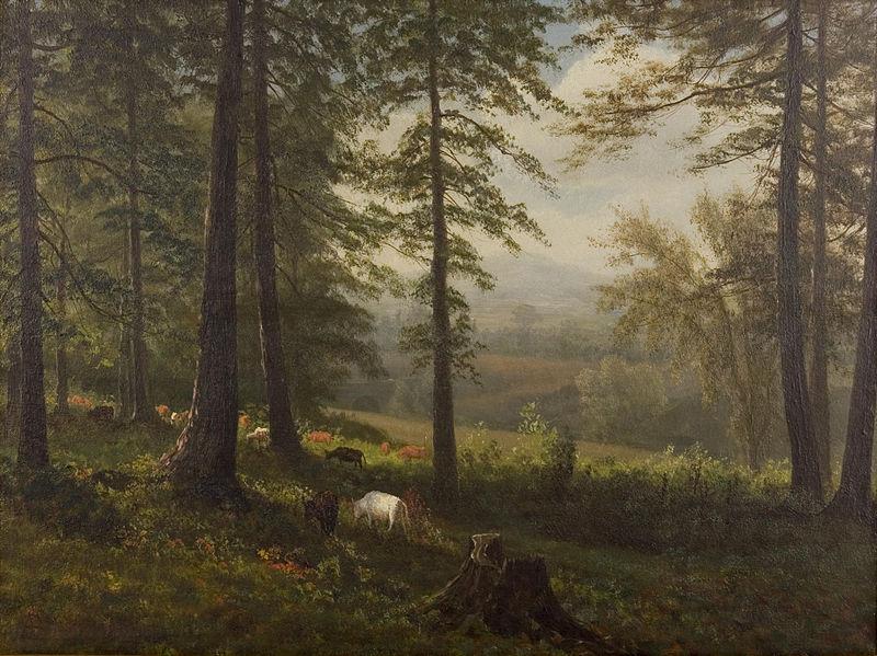 File:Albert Bierstadt - View to a Clearing.jpg